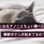 【気になるアノことちょい調べ】睡眠中ナニが起きてるの?